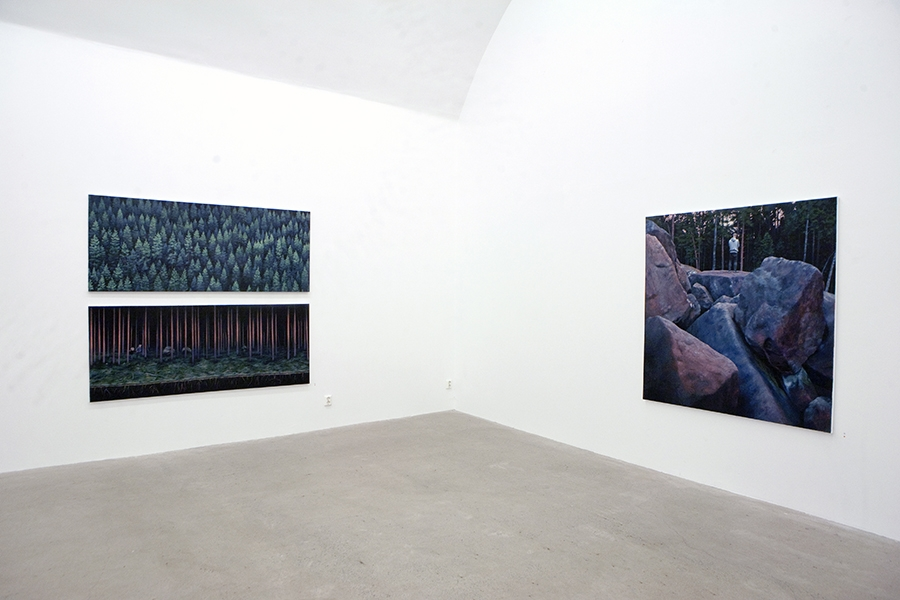 Installation view, Galleri Wallner